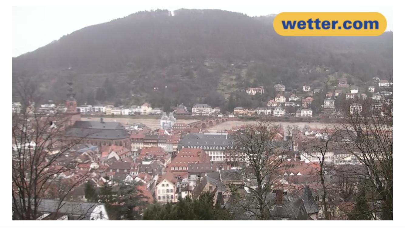 Hochwasser Heidelberg